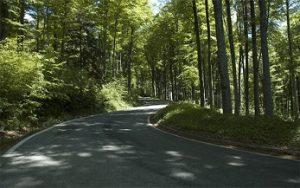 Preusmjeravanje prometa sa Sljemenske ceste